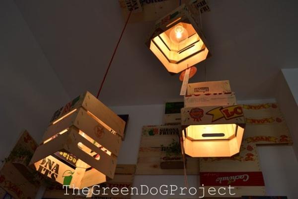 TheGreenDoGProject-20