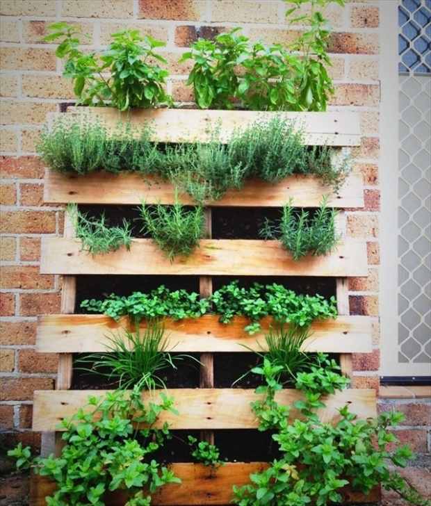 pallet-herb-garden-2