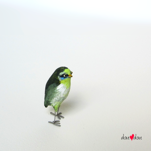 Miniature-Masked-Green-Bird