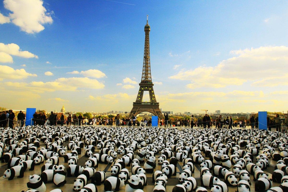 Osos Panda de Papel Maché